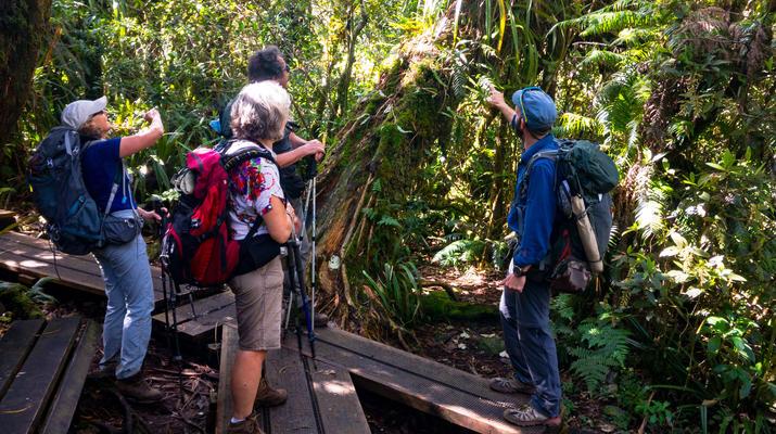 Randonnée / Trekking-Cirque de Salazie, Hell-Bourg-Randonnée Bélouve et Le Trou de Fer, Réunion-2
