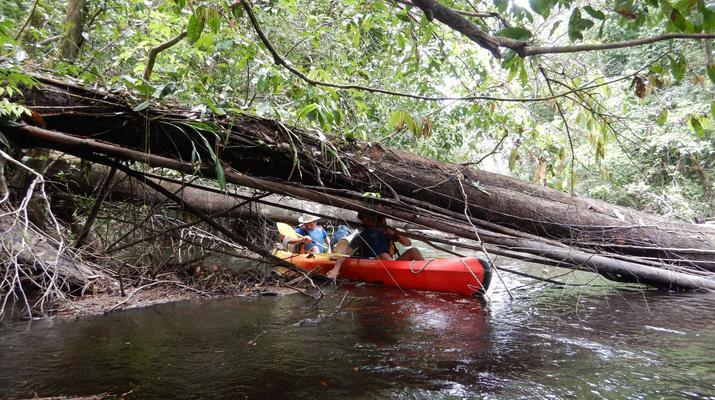 Canoë-kayak-Guyane-Excursion Canoë-Kayak sur les rivières de Guyane-1