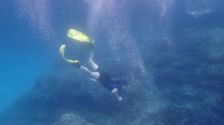 Snorkeling-Palma, Majorque-Plongée en apnée dans la réserve marine près de Palma de Majorque-4