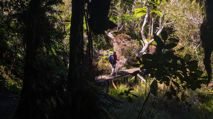 Randonnée / Trekking-Cirque de Salazie, Hell-Bourg-Randonnée Bélouve et Le Trou de Fer, Réunion-4