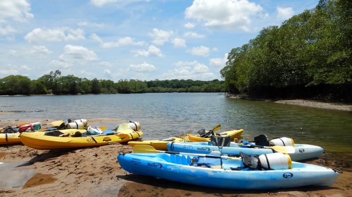 Canoë-kayak-Guyane-Excursion Canoë-Kayak sur les rivières de Guyane-7