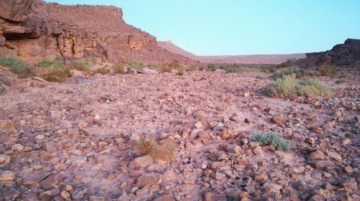 Curso de Superviviencia-Marrakech-Curso de supervivencia en el desierto de Faoum Zguid en Marruecos-4