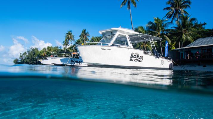 Plongée sous-marine-Bora Bora-Baptême de Plongée Sous-Marine à Bora Bora-3