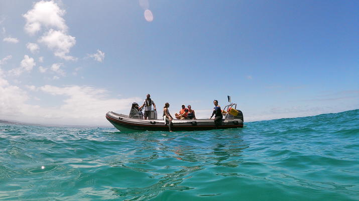 Snorkeling-Plettenberg Bay-Swimming with seals in Robberg Nature Reserve-5