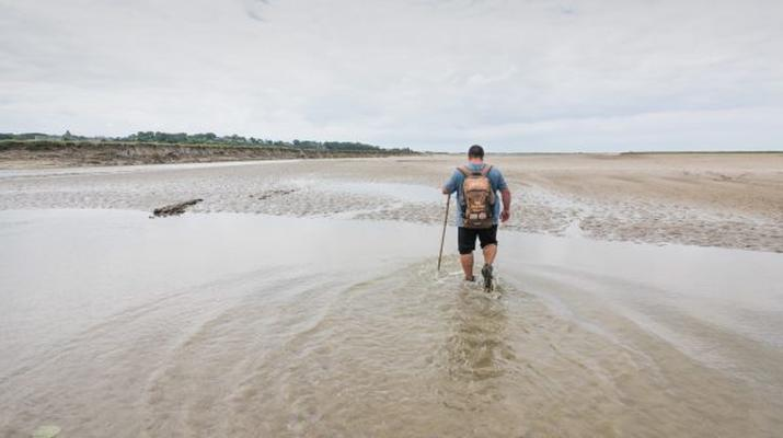 Randonnée / Trekking-Baie de Somme-Randonnée guidée, découverte des oiseaux et phoques en Baie en Somme-1