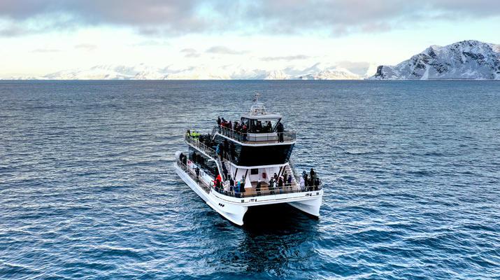 Wildlife Experiences-Tromsø-Silent whale watching excursion from Tromsø-2