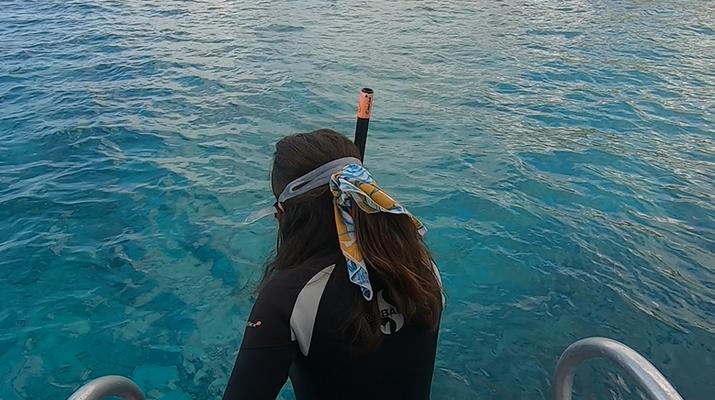 Snorkeling-Réserve Cousteau-Randonnée palmée dans la réserve naturelle Cousteau en Guadeloupe-3