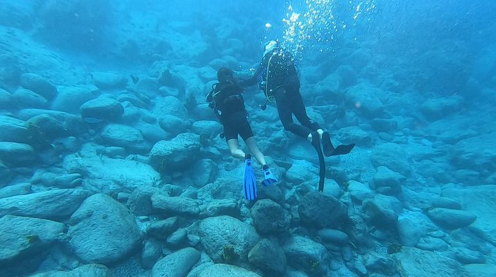 Plongée sous-marine-Réserve Cousteau-Baptême de Plongée dans la Réserve Cousteau en Guadeloupe-4