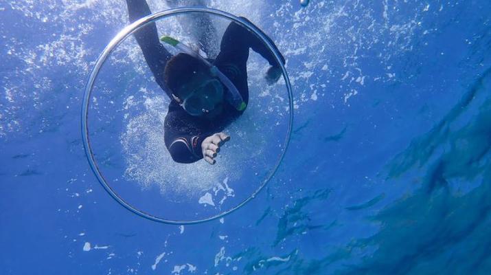 Snorkeling-Palma, Majorque-Plongée en apnée dans la réserve marine près de Palma de Majorque-2