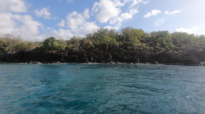 Plongée sous-marine-Réserve Cousteau-Baptême de Plongée dans la Réserve Cousteau en Guadeloupe-6