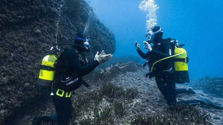 Plongée sous-marine-Antibes-Baptême de Plongée à Antibes-1