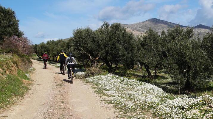 Mountainbike-Kissamos-E-Bike-Tour an die wilde Westküste, von Kissamos nach Sfinari-2