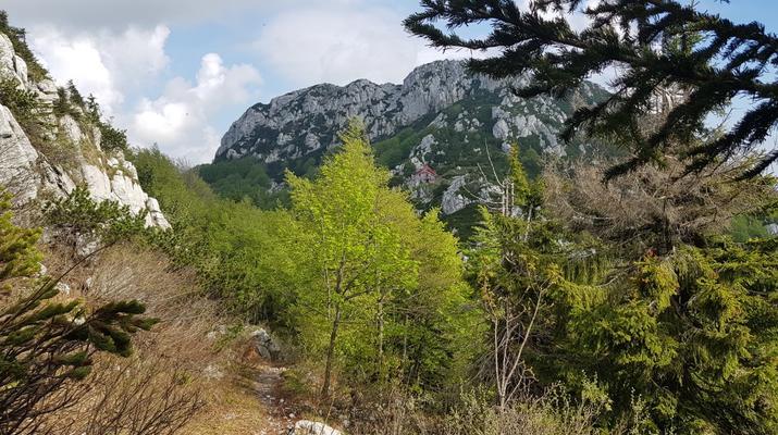 Randonnée / Trekking-Risnjak National Park-Excursion pédestre guidée dans le parc national de Risnjak-4