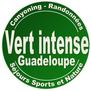 Vert Intense-logo